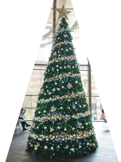 arbre-de-noel-CE-01